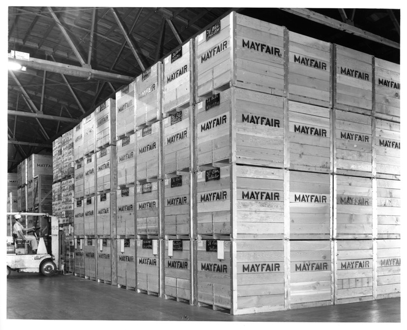 Wooden Shipping Crates in the Warehouse of the San Jose Mayfair Packing Co.