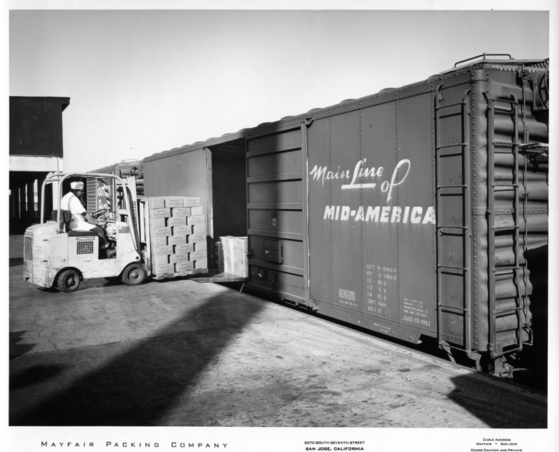Pallets of Boxed Fruit Being Loaded Into a Large Shipping Container
